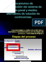 Salida Salter Nasal Proceso Penal Chiapas