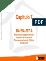 Cap7_Normas TIAEIA 607