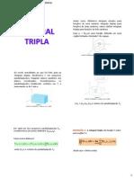 Integral Tripla 2013.1