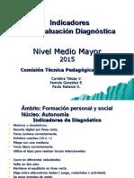 INDICADORES DE DIAGNOSTICO M. MAYOR 2015.ppt
