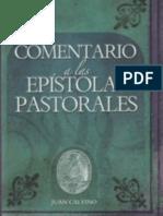 Juan Calvino - Comentario Biblico a Las Epistolas Pastorales - Timoteo y Filemon