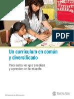 2010 Curriculum En comun y Curriculum