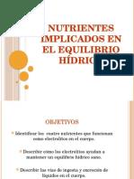 Nutrientes Implicados en El Equilibrio Hídrico