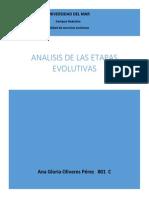 Analisis de Las Etapas Evolutivas