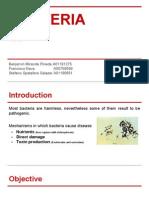 Bacteria Toxicology