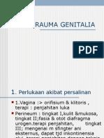 Perlukaan Alat Genital