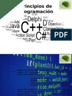 Programación Conceptos Básicos