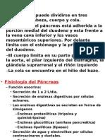 Pancreas 1