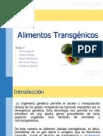 Alimentos Transgénicos - Grupo#2