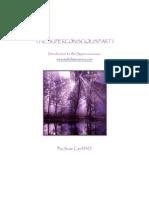 superconsciousI.pdf