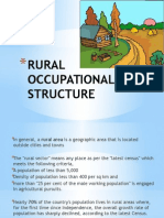 Rural Occupational Structure