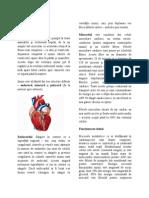organele interne 22.docx