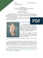 texto floraliaweb