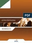 Tti Gestão Profissional s01