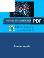 Neurotrauma.pdf