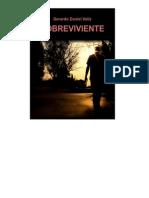 Sobreviviente - Gerardo Daniel Veliz