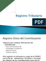 TMI_Registro_Tributario.pdf