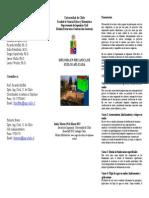 Triptico Del Programa PDF 158 Kb (1)