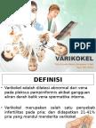 REFERAT Varikokel PPT