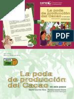 Catie - PCC 4. La Poda de Producción Del Cacao en Seis Pasos