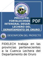Proyecto FIDELECH