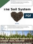 topic 3 soil