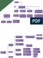 Diagramas Derivados Del Petroleo