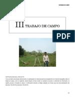 a6 Trabajo de Campo