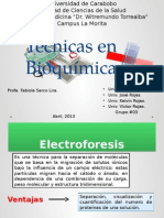 tecnicasbioquimica-130408001551-phpapp01