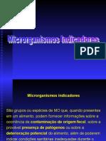 38203886 Microbiologia Microorganismos Indicadores