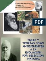 Evolucion Gauss