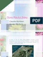 Prezentare Gura Raului Sibiu