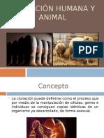 Clonación humana y animal.pptx
