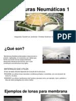 Estructuras neumaticas (1)
