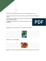 biología (pigmentos)