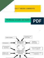 PROBLEMAS AMBIENTALES.pdf