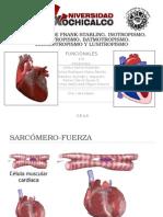 Frank-Starling PDF..ppt