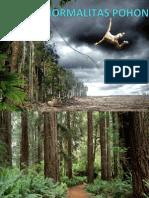 2. Abnormalitas pohon