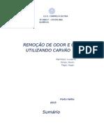 Remoção de Odor e Cor Atravez de Carvao Ativado