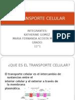 El Transporte Celular