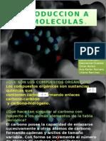 Introduccion a Biomoleculas