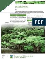 nz-ferns-lowres.pdf