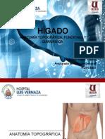Anatomia Quirurgica Del Higado Postgrado Cirugia General Hlv Dr David Yèpez