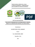 Informe Final Ppp Krol