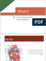 PPT Heart