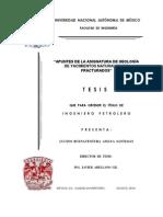 Apuntes de la asignatura de geologia de yacimientos naturalmente fracturado.pdf
