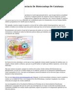 El Weblog De L'Associacio De Biotecnolegs De Catalunya