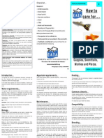 How-to-care-for-Guppies-Mollies-and-Platys.pdf