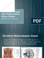 Blok 10 Urogenital - Struktur, Fungsi Dan Mekanisme Kerja Ginjal