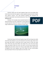 Morfometri Daerah Aliran Sungai.doc